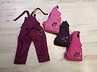 Полукомбинезон лыжный для девочек оптом, Seagull, 2-6 лет,  № XT001