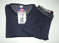 Термо костюм (кофта + штаны). Ластовица. Спортивное термо белье мужское черное и серое Amigo, Karlo