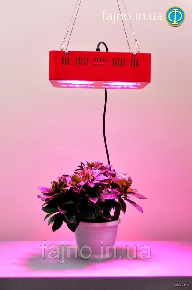 Светодиодное освещение теплиц - фитосветильники светодиодные