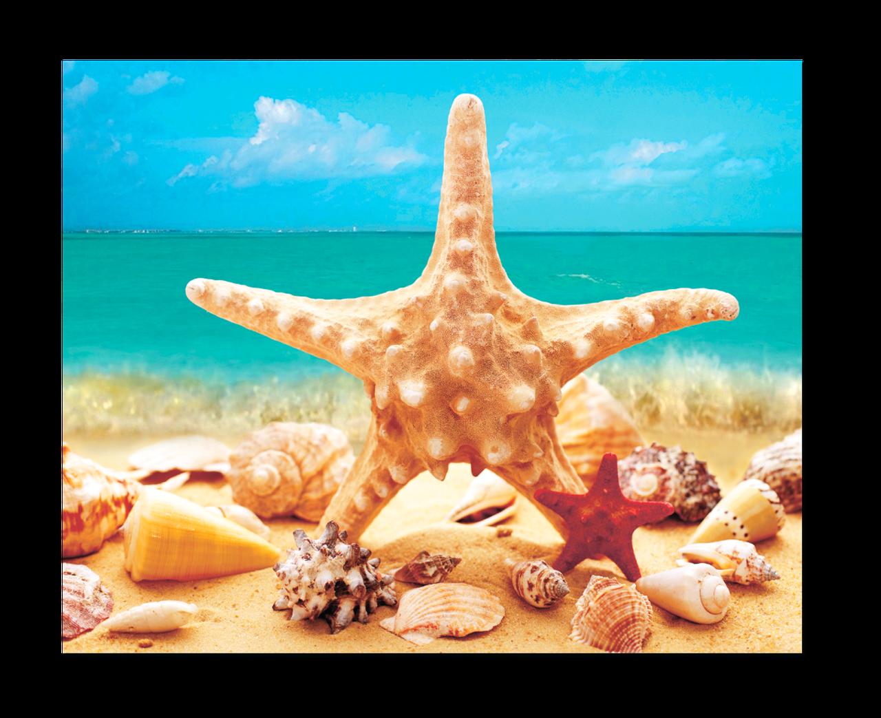 """Картина на стекле """" Морская звезда на фоне моря"""""""