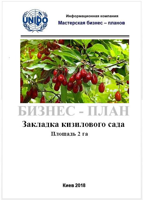 Бизнес - план (ТЭО). Ягоды кизила. Кизиловый сад. Выращивание. Экономика, технология возделывания