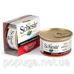 Schesir Tuna Prawns консерви для кішок, тунець з креветками в желе, банку 85 г