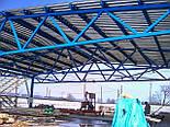 Здание-ангар под производство 15х60х5 с прогонами и профнастилом, фото 2