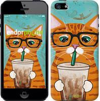 """Чехол на iPhone 5 Зеленоглазый кот в очках """"4054c-18-15626"""""""