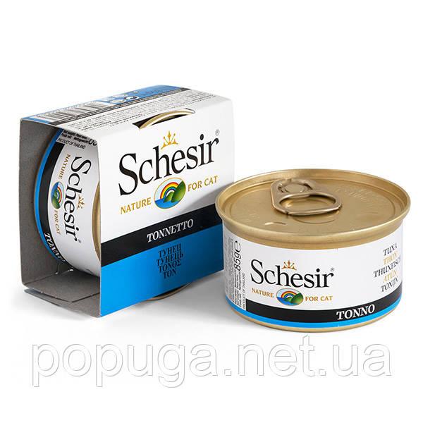 Schesir Tuna консервы для кошек, тунец в желе, банка 85 г