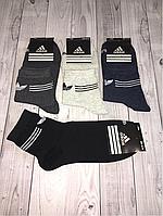 Носки мужские спорт Adidas (102)
