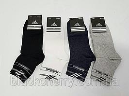 Носки мужские спортивные Adidas(107)
