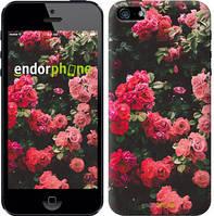"""Чехол на iPhone 5s Куст с розами """"2729c-21-15626"""""""