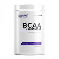 Аминокислоты OstroVit - BCAA + L-Glutamine (500 грамм)