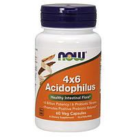 Пробиотик Lactobacillus NOW 4x6 Acidophilus 60 вег. капсул