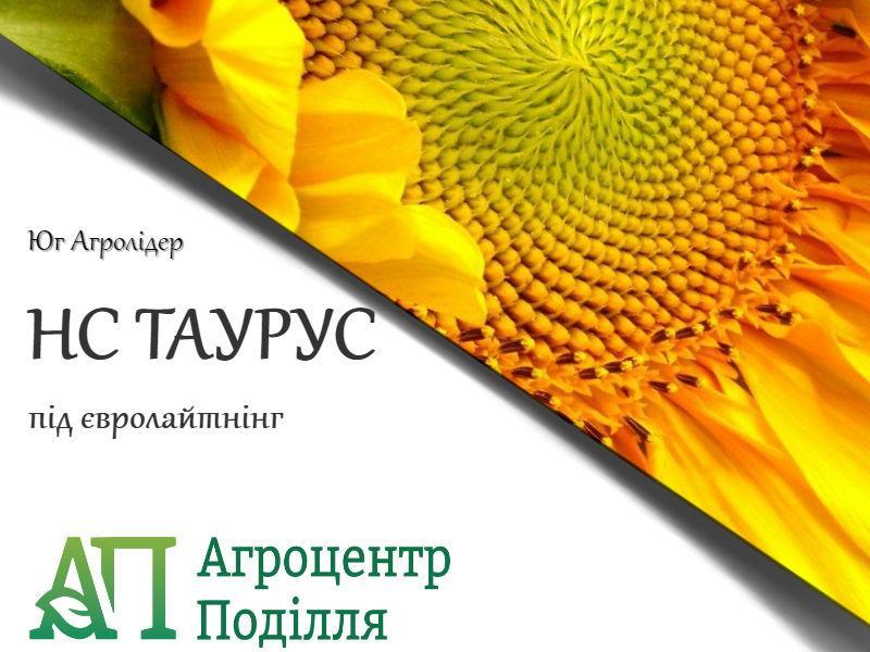 Семена подсолнечника под евролайтинг НС ТАУРУС (ІМІ) 109-113 дн. Фракция Экстра
