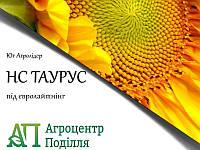 Насіння соняшнику під евролайтинг НС ТАУРУС (ІМІ) 109-113 дн. Фр.Екстра