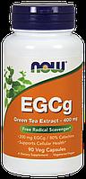 Now EGCg Green Tea Extract 400mg 90 veg caps