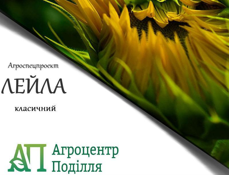 Семена подсолнечника Лейла 106 дн. Экстра (новинка!)