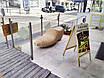 Параметрическая мебель (параметричні меблі), фото 2