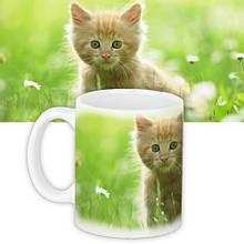 Кружка с принтом Для детей Котёнок (KR_DET045)