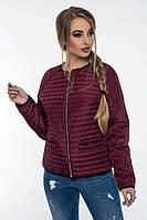 Стильная куртка осень-весна Дана бордовый (42-52)