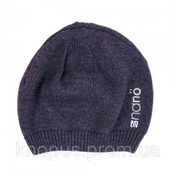 Демисезонная шапка для мальчика 200 TUT F16 Gray Mix, Nano
