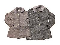 Пальто для девочек оптом, размеры 4-12лет   F&D, арт. 9783, фото 1