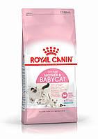 Корм Royal Canin Mother & Babycat, для котят и кошек в период беременности и лактации, 0,4 кг