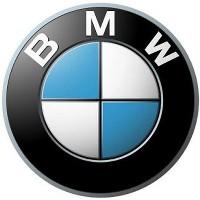 Кольца в щиток BMW