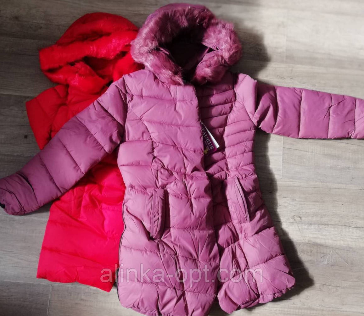 Куртка утепленная для девочек Taurus оптом, 8-16 лет.