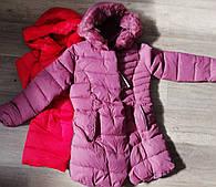 Куртка утеплена для дівчаток Taurus оптом, 8-16 років.