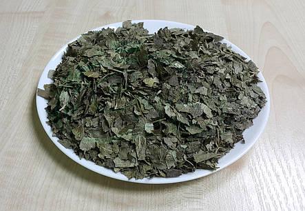 Смородина листья 50г, фото 2