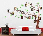 Интерьерная наклейка  на стену Дерево коричневое с фоторамками  (отличное качество), фото 2