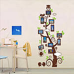 Интерьерная наклейка  на стену Дерево с рамками для фото  (отличное качество), фото 3