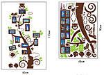 Интерьерная наклейка  на стену Дерево с рамками для фото  (отличное качество), фото 5