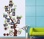 Интерьерная наклейка  на стену Дерево с рамками для фото  (отличное качество), фото 6