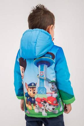 """Куртка весна-осень с принтом """"Щенячий патруль"""", 104,110,116 роста, фото 3"""