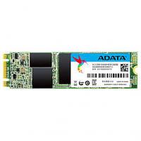 Накопитель M.2 SSD 240GB ADATA SU800 TLC (ASU800NS38-256GT-C)