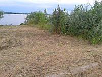 Покіс трави тримером, фото 1