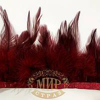 Тесьма перьевая Петух, цвет Red Wine, 0.5м, высота 13-15 см