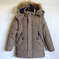 """Куртка зимняя """"Cakatu"""" #1917 для мальчиков. 9-10-11-12-13 лет (134-158 см). Бежевая. Китай. Оптом"""