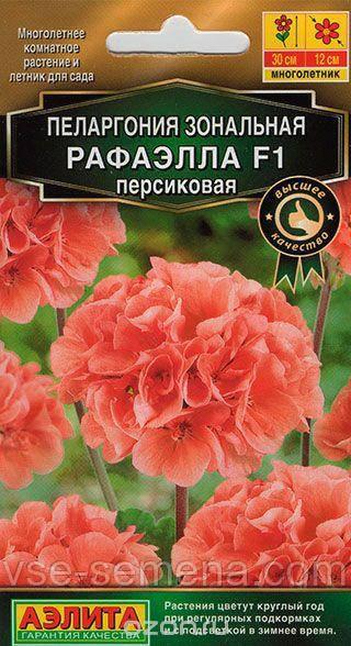 Пеларгония Рафаэлла F1 Персиковая, 5шт.