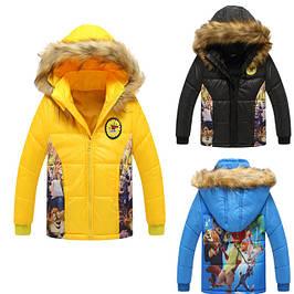 Куртки, пальто, ветровки, жилетки