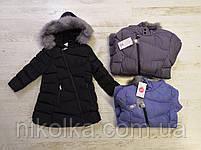Куртки на меху для девочек оптом, Glo-Story, 110-160 рр., арт.GMA-6451, фото 2