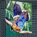 FLF-030 Птичка на ветке. Набор для вышивки бисером на подрамнике, фото 2