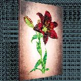 FLF-038 Лилия. Набор для вышивки бисером на подрамнике, фото 2