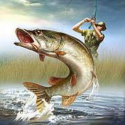 Полювання. Рибалка