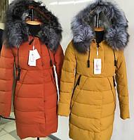 Куртки женские украина оптом в Харькове. Сравнить цены, купить ... fc4e7361a5e