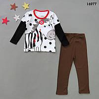 "Пижама ""Зебра"" для девочки. 90, 95, 100, 110, 120, 130 см, фото 1"