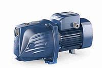 Насос, центробежный, самовсасывающий, Pedrollo JSWm 2СX, 750Вт, 50м, для водоснабжения дома, полива, орошения