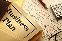 Бизнес-план для получения гранта