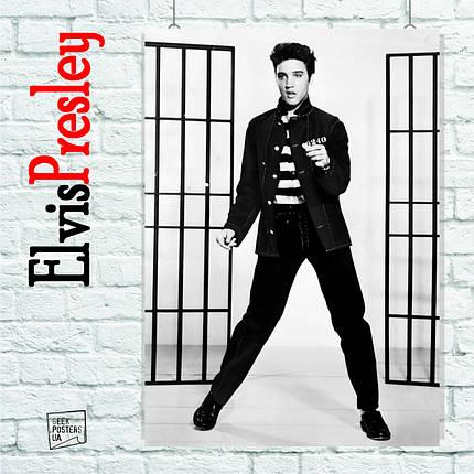 Постер Элвис Пресли, Elvis Presley (на фоне клеток). Размер 60x42см (A2). Глянцевая бумага, фото 2