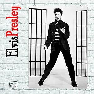 Постер Элвис Пресли, Elvis Presley (на фоне клеток). Размер 60x42см (A2). Глянцевая бумага