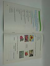 Тестові завдання з Природознавства 3 клас Андрусенко Генеза, фото 2